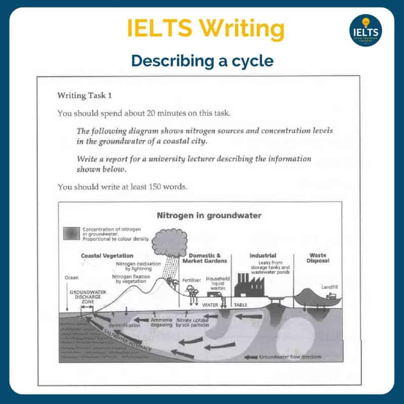 nitrogen cycle ielts task 1