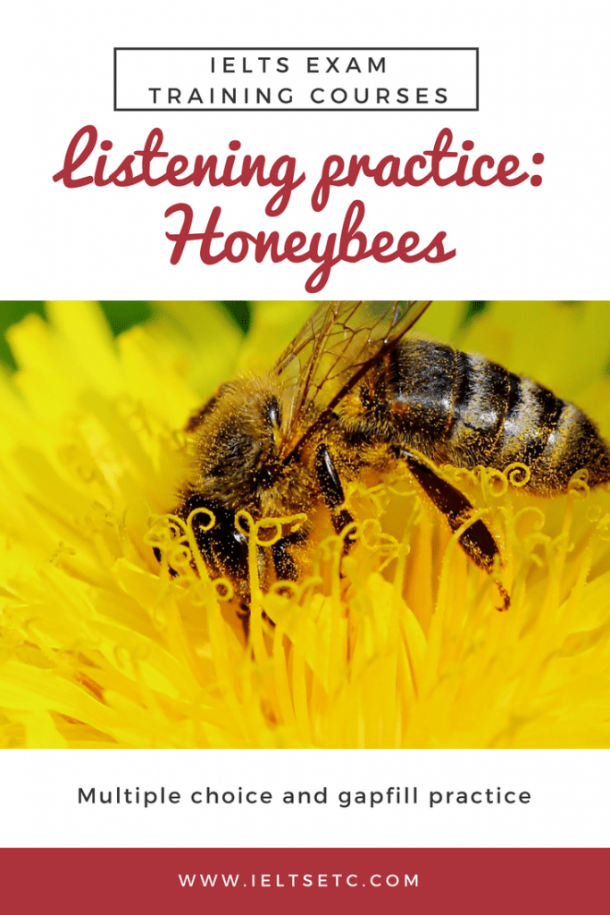 IELTS Listening: Honeybees in Australia - IELTS with Fiona