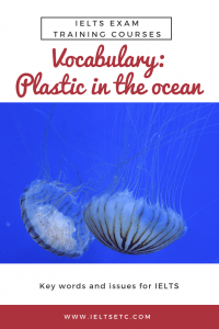 IELTS vocab plastic pollution