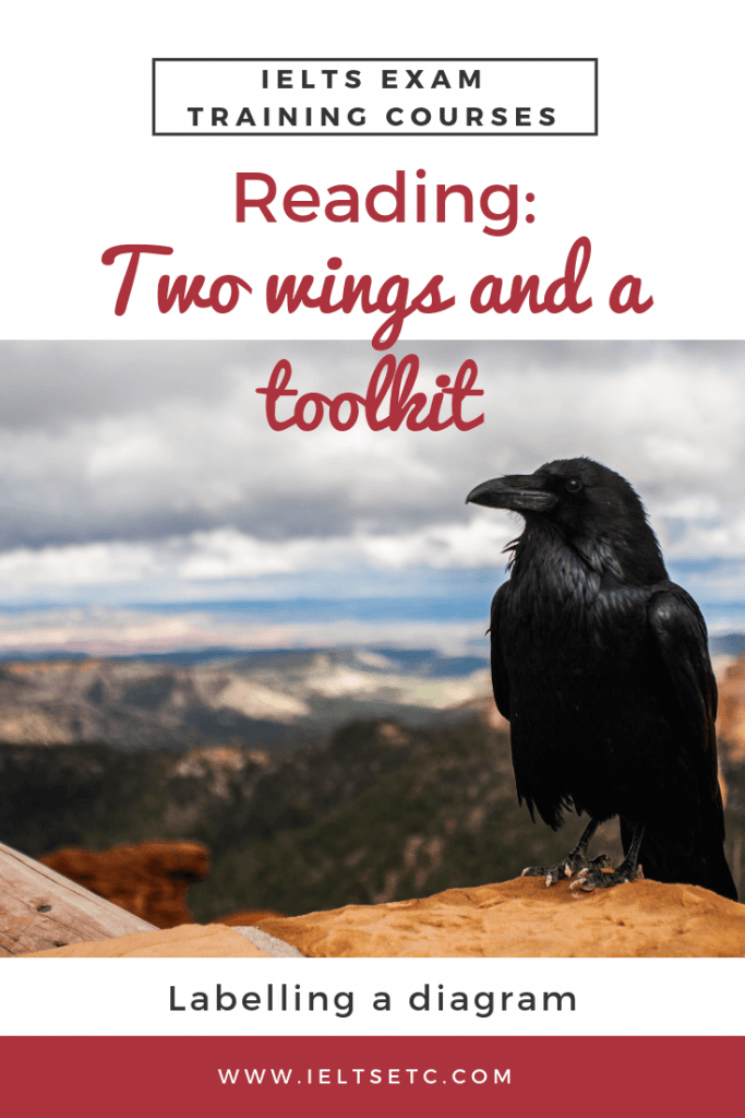 IELTS Reading: Two wings and a toolkit - IELTS with Fiona